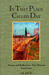 In That Place Called Day : Poems and Reflections That Witness God's Love