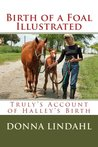 Birth of a Foal Illustrated (From Mare to Filly Book 1)