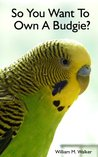 So You Want To Own A Parakeet Or Budgie? Parakeet & Budgie Care.