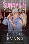 Sunny with a Chance of True Love: The Ballad of Ugly Ross (Lonesome Point, Texas #4.5)