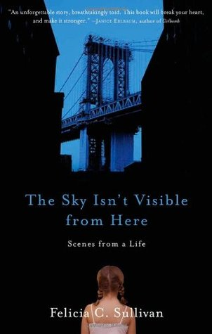 The Sky Isn't Visible from Here by Felicia C. Sullivan