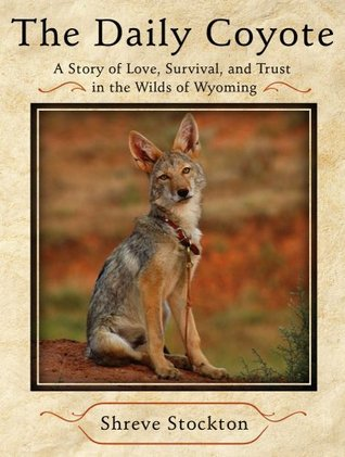 The Daily Coyote by Shreve Stockton