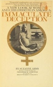 Immaculate deception by Suzanne Arms