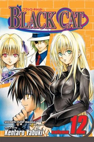 Black Cat, Volume 12