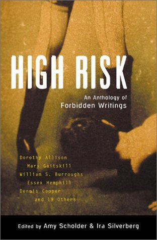 High Risk by Amy Scholder