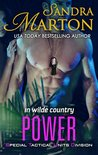 Power (Special Tactical Units Division #1; In Wilde Country #3)