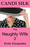 The Naughty Wife 2