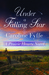 Under a Falling Star (Prairie Hearts, #4)