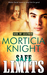 Safe Limits (Kiss of Leather, #2)