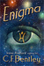 Enigma (Confederated Star Systems #2)