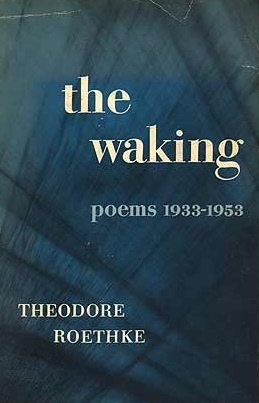 analyzing the waking by theodore roethke