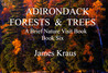 Adirondack Forests & Trees