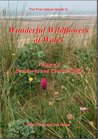 Wonderful Wildflowers of Wales: Seashores and Coastal Cliffs v.2