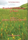 Wonderful Wildflowers of Wales: Mountains, Moorland and Meadows v. 3