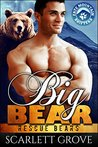 Big Bear (Rescue Bears, #3)