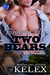 Finding His Two Bears (Bear Mountain, #11)
