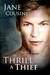 To Thrill A Thief (Southern Sanctuary, #8)