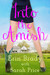 Into the Amish by Erin Brady