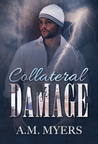Collateral Damage (Hidden Scars, #2)