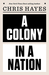 A Colony in a Nation by Christopher L. Hayes