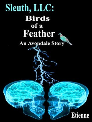 Sleuth, LLC: Birds of a Feather (an Avondale Story)