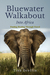 Into Africa (Bluewater Walkabout Book 2)