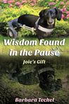 Wisdom Found In The Pause: Joie's Gift