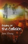 Steps of the Callejon by Jane Zhang