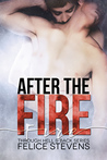 After the Fire (Through Hell and Back, #2)