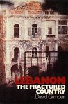 Lebanon: The Fractured Country
