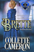 Brette: Intentions Gone Astray (Conundrums of the Misses Culpepper #3)