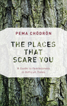 The Places That Scare You by Pema Chodron