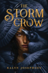 The Storm Crow (The Storm Crow, #1)