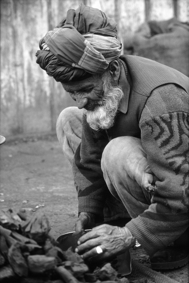 Afghan elder collecting precious firewood from Juniper brush in Schamshatoo refugee camp south of Peshawar, Pakistan in 2002