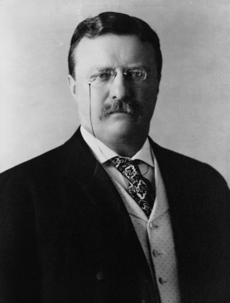image regarding The Man in the Arena Printable known as Estimate as a result of Theodore Roosevelt: \u201cIt is not the critic who