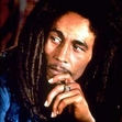 Ebook NATURAL MYSTIC THE LEGEND  LIVES ON BOB MARLEY AND THE WAILERS read Online!
