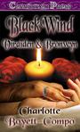 Ebook Phantom of the Wind read Online!