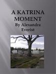 Ebook A Katrina Moment read Online!