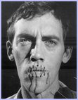 Ebook In the Shadow of the American Dream: The Diaries of David Wojnarowicz read Online!