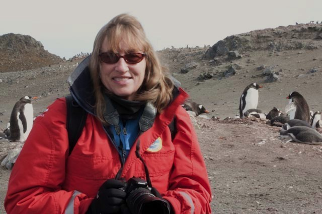 Dyan deNapoli (Author of The Great Penguin Rescue)
