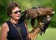[Jemima Parry-Jones] ☆ Eyewitness: Eagles & Birds of Prey [graphic-novels PDF] Ebook Epub Download æ loveonline.pro