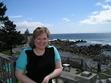 Ebook Lost on Brier Island read Online!