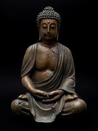 Image result for gautam buddha