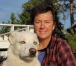Ebook Sled Dog School read Online!