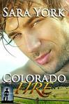 Ebook Colorado Flames With A Texas Twist read Online!