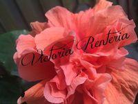 Victoria Renteria