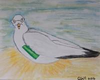 Grand Me Sea Gull