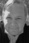 Ebook Novel Criticism: How to Critique Novels Like a Novelist read Online!