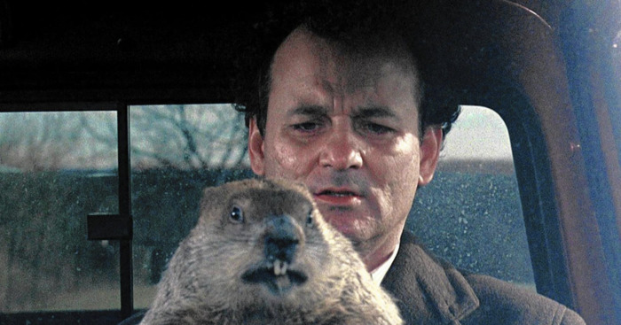 Six More Weeks of Winter? Here Are Books to Read for Every Groundhog Day Forecast
