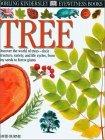 Tree by David Burnie